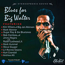 Blues for Big Walter